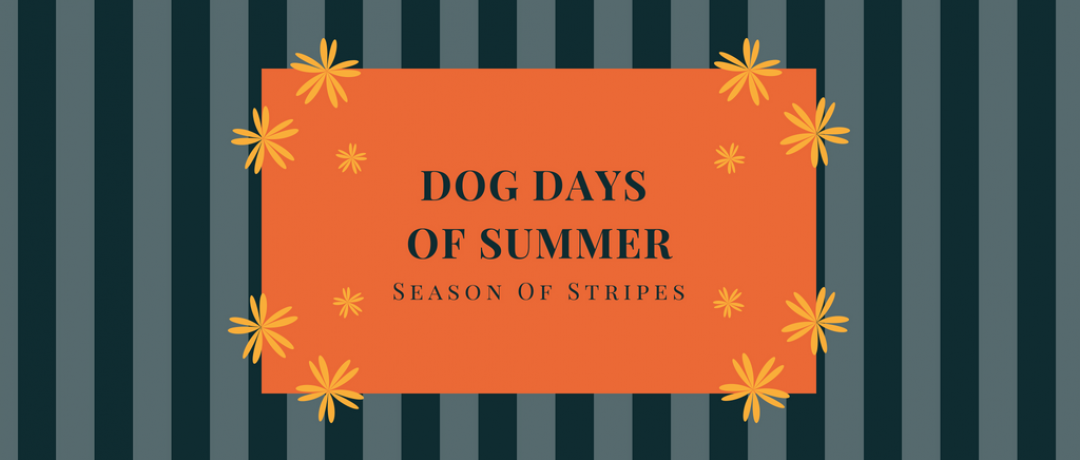 Dog Days of Summer:  The Story of My Stripe Maxi Dress