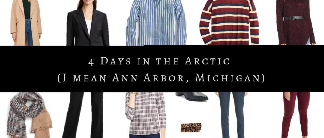 4 Days in the Arctic (I mean Ann Arbor, Michigan)