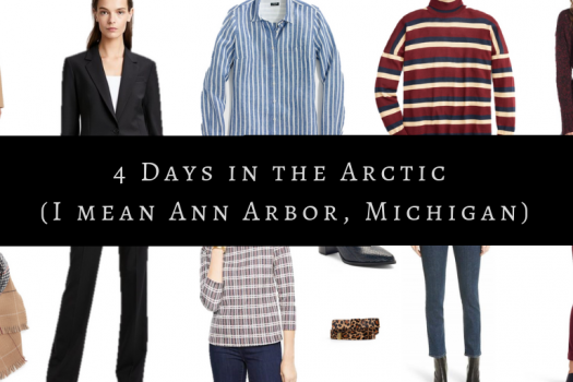 4 Days in the Arctic (I mean Ann Arbor, Michigan)